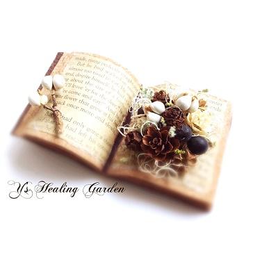 木の実の本